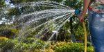 Come risparmiare acqua nell'orto